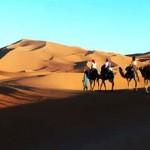 A dos de dromadaire au désert de L'erg chebbi, Merzouga